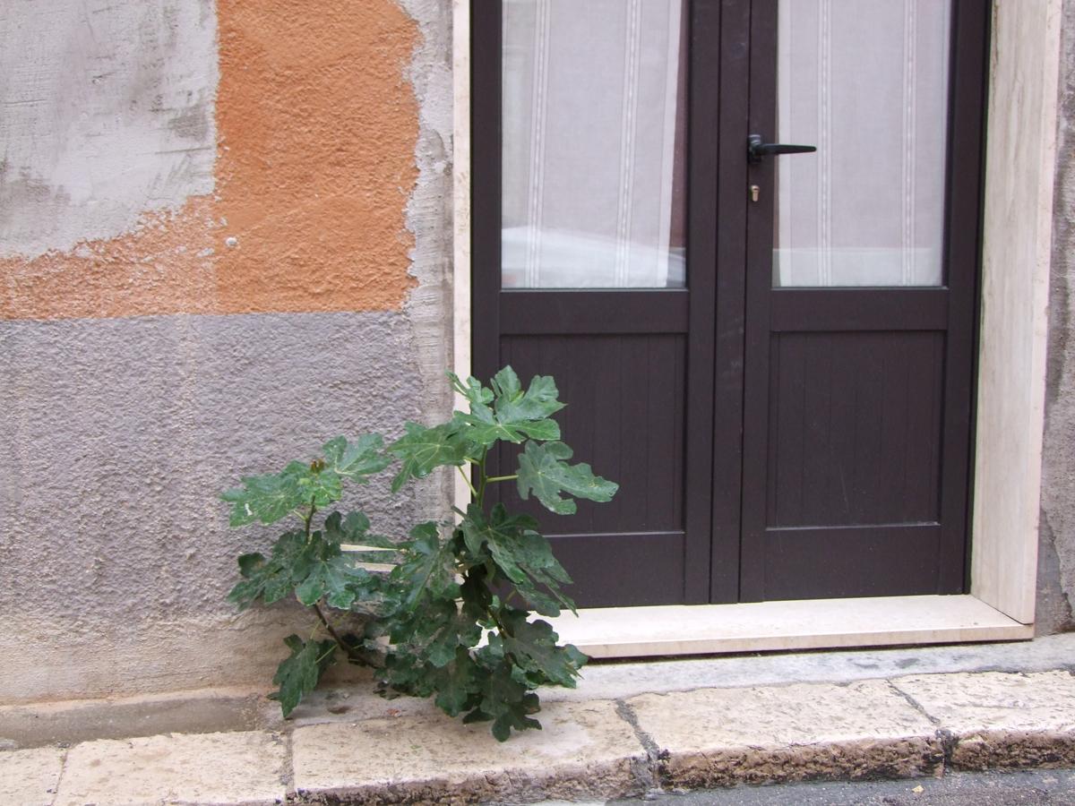 http://www.midiesis.it/midiesis/wp-content/uploads/2012/09/via-umberto-I.jpg
